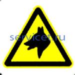 Знак: L 51 Осторожно. Злая собака - табличка на самоклеющейся пленке - наклейка